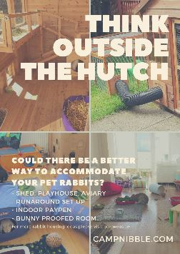 think outside the hutch poster