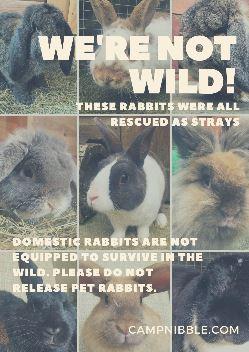 were not wild poster