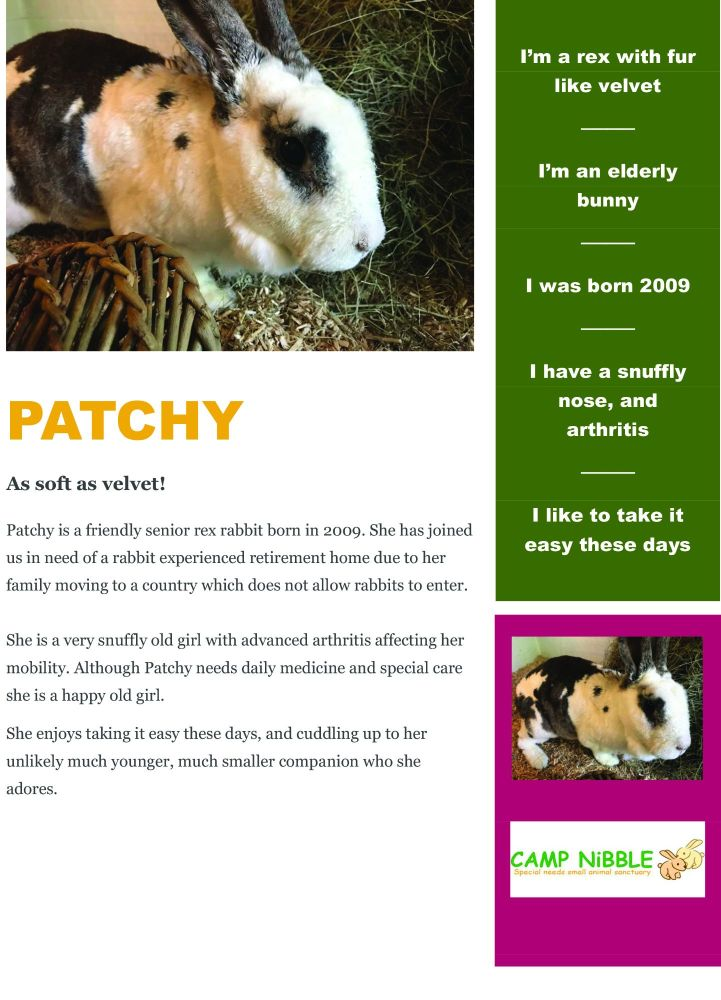 Patchy info sheet jpg