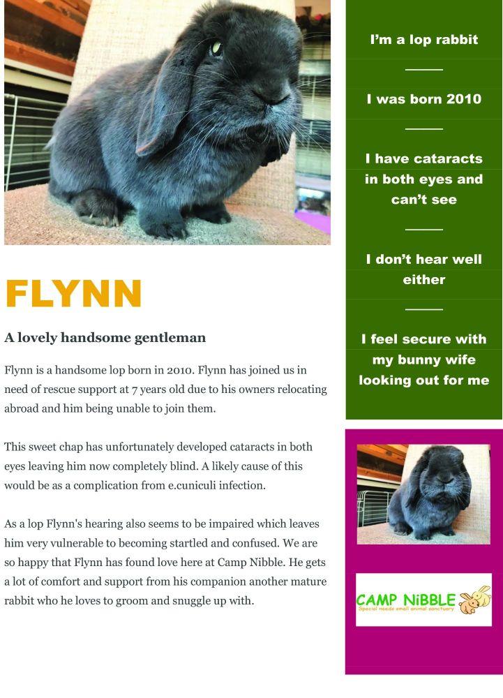 Flynn info sheet jpg