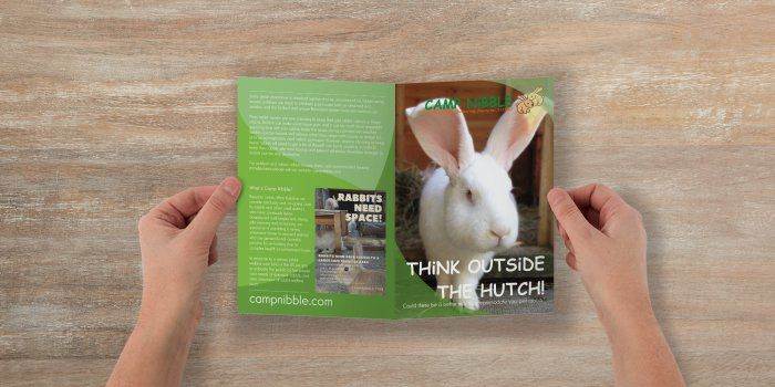 think outside the hutch collage leaflet design