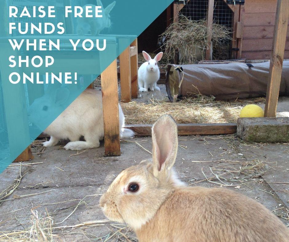 easyfundraising rabbits
