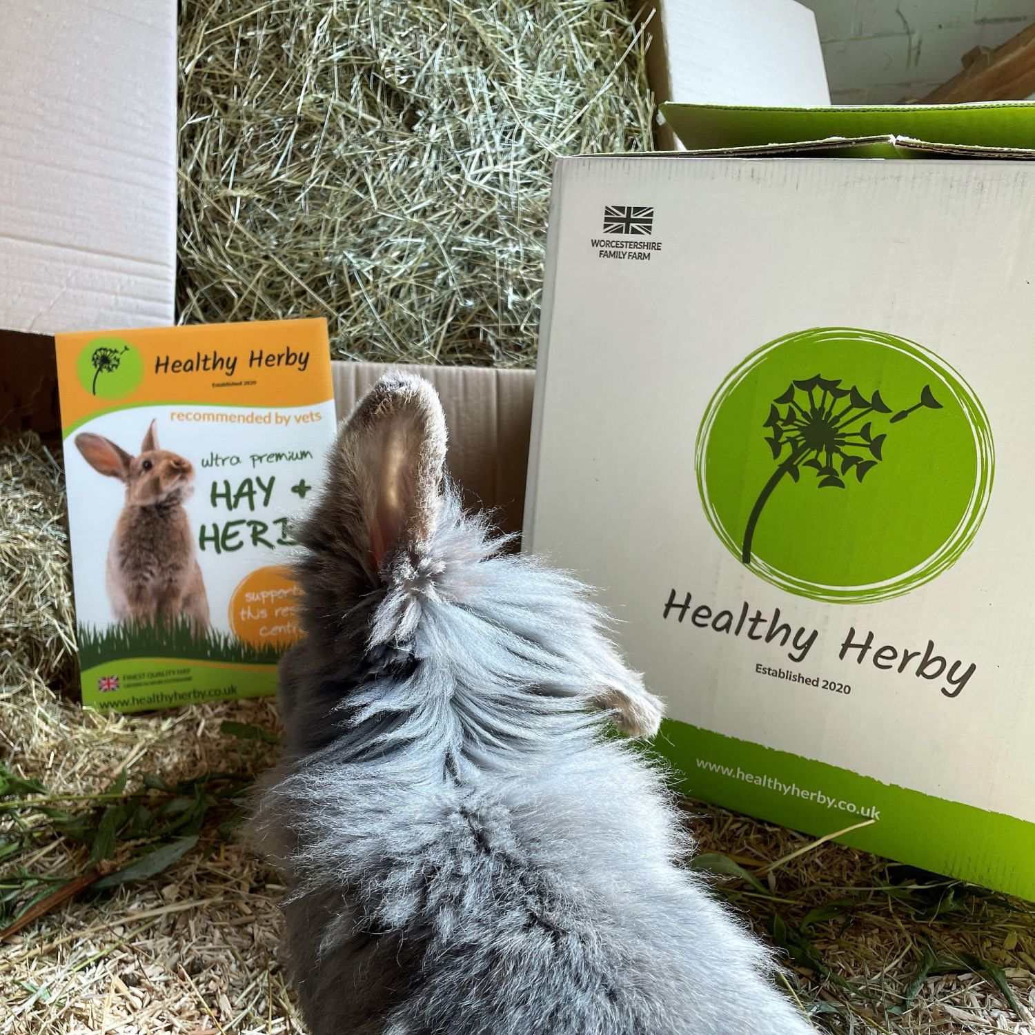 healthy herby