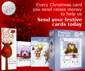Charity greetings Festive-Banner-300x250
