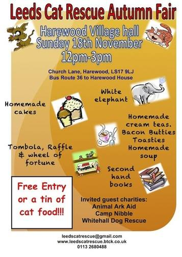 LCR Autumn fair
