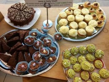 Lush cakes