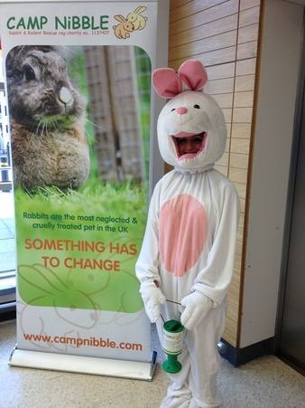 Amelia rabbit suit