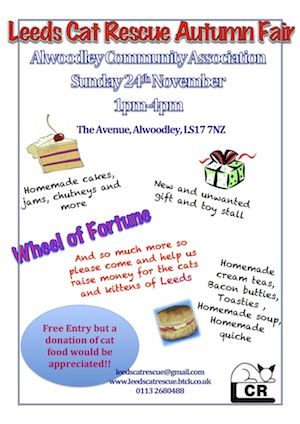 2013 LCR AUTUMN FAIR 1
