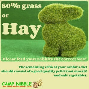 grass and hay poster