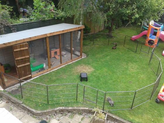 rabbit housing - kennel plus run