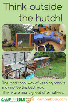think outside the hutch 2
