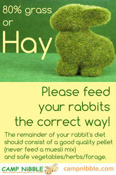 Grass or hay poster 2