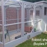 rabbit housing - boyles pet housing avairy raw