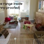 rabbit housing - bunny proofed room raw