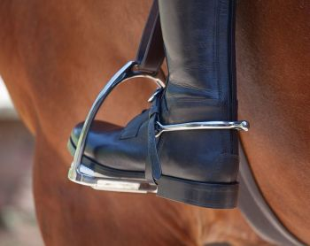 Shires Leather Spur Straps