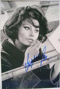 Sophia Loren autograph