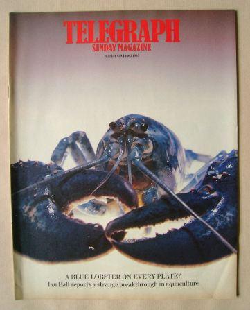 <!--1985-06-02-->The Sunday Telegraph magazine - 2 June 1985