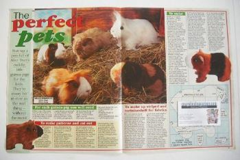 The Perfect Pets Guinea Pigs sewing pattern (designed by Alan Dart)