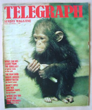 <!--1981-02-01-->The Sunday Telegraph magazine - 1 February 1981