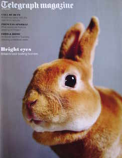 <!--2011-04-23-->Telegraph magazine - Orange Mini Rex cover (23 April 2011)