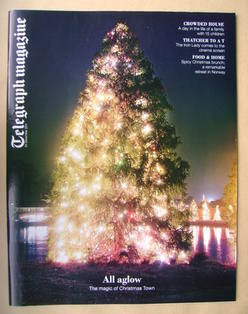 <!--2011-12-24-->Telegraph magazine - All Aglow cover (24 December 2011)