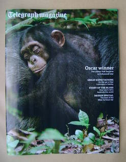 <!--2013-04-27-->Telegraph magazine - Oscar the Chimpanzee cover (27 April