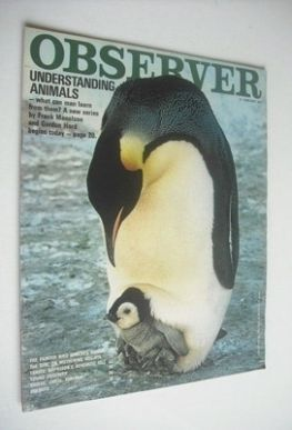 <!--1971-01-10-->The Observer magazine - Understanding Animals cover (10 Ja