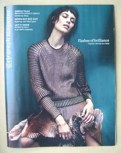 <!--2013-11-23-->Telegraph magazine - Flashes Of Brilliance cover (23 Novem