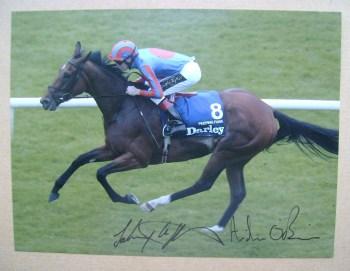 Johnny Murtagh and Aidan O'Brien autographs