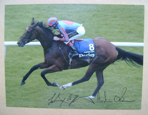 Johnny Murtagh and Aidan O'Brien autographs