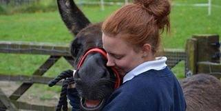 Go to the Donkey Sanctuary's website for more info