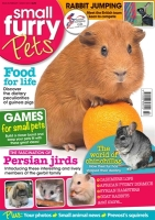Click here to see animal magazines for pet lovers