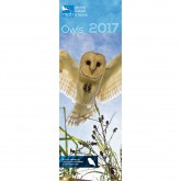 Treat yourself or an owl lover to this RSPB Owls 2017 calendar
