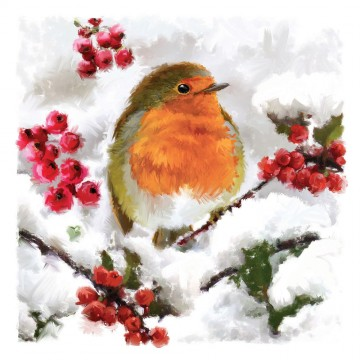 Click here to see Christmas cards from the RSPB