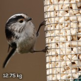 Fly away to the RSPB Online Shop to see more suet offers