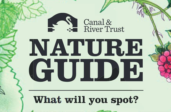 Download the Nature Guide from the Canal and Rivers Trust
