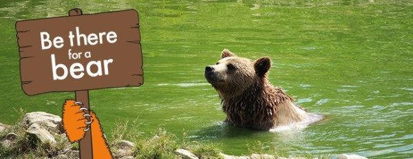 Be there for a bear with World Animal Protection