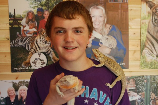 Paradise Wildlife Park Visit and Reptile and Bug Bonanza for Two