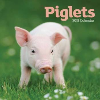 Piglets Mini Calendar 2018