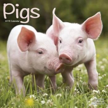 Pigs Calendar 2018