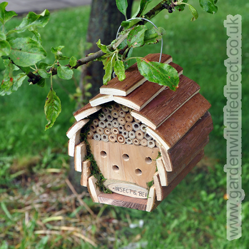 Kingfisher Wooden Insect And Bee Hotel from Garden Wildlife Direct