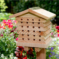 Solitary Bee Hive from Suttons Seeds