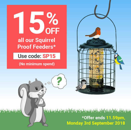 Get 15% off Squirrel Proof Feeders at Garden Wildlife Direct