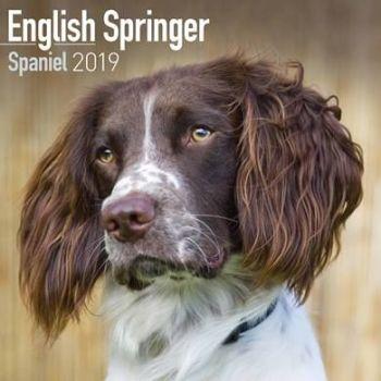 English Springer Calendar