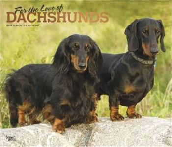 For the love of Dachshunds Deluxe Calendar