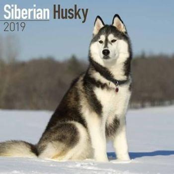 Siberian Husky Calendar