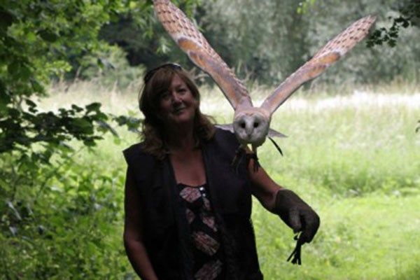 2 for 1 Woodland Walk and Owl Experience at Lee Valley Park