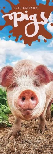 Pigs Slim Calendar