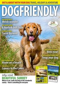 Dog magazines can make great gifts