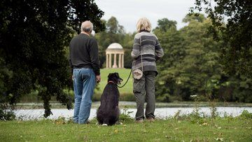 Many National Trust places are dog friendly